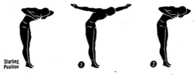Упражнения для осанки. Разведение рук в стороны
