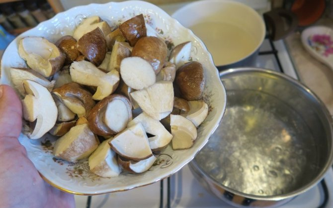 Варка белых грибов