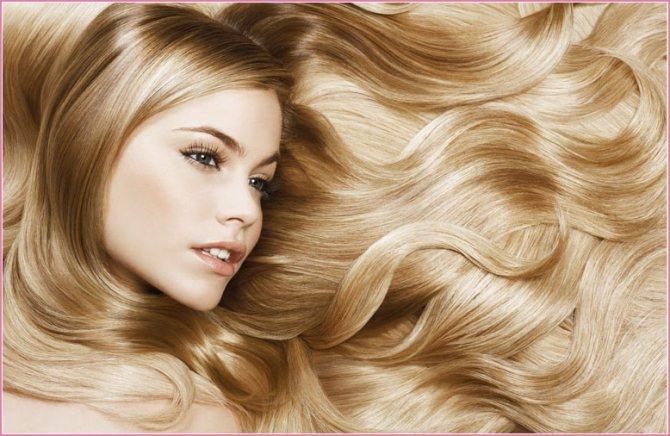 волосы осветленные крем краской