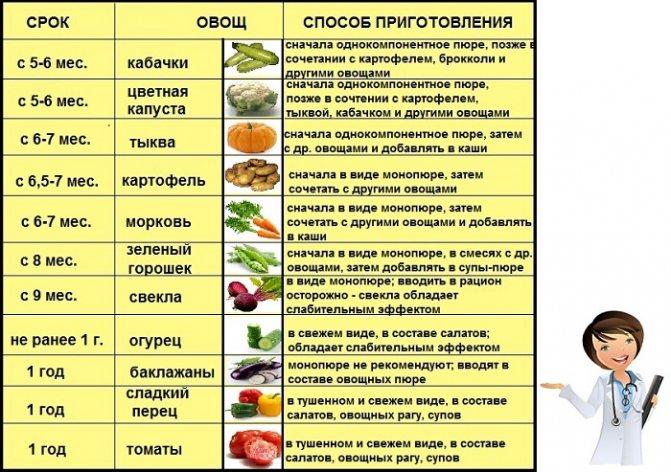 введение прикорма овощи