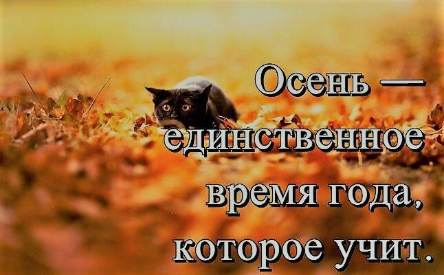 Высказывания про осень