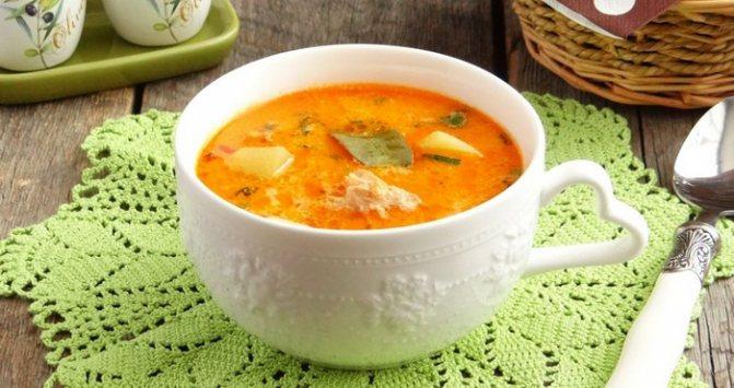 яркий суп из консервов в томате