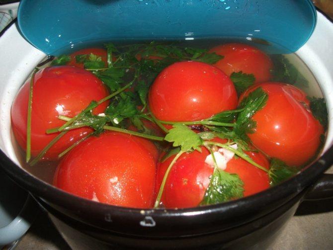 Засоленные в кастрюле помидоры.