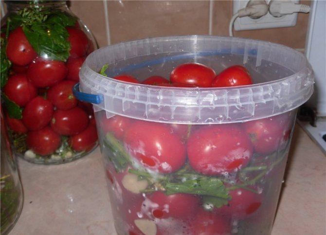 Засолка красных помидоров в пластиковом ведре.