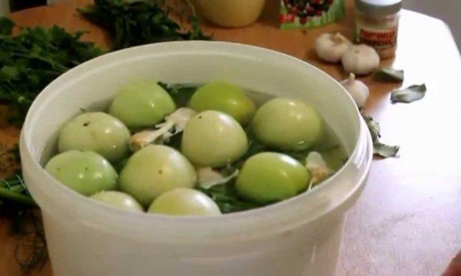 Засолка зеленых помидоров в пластиковом ведре.