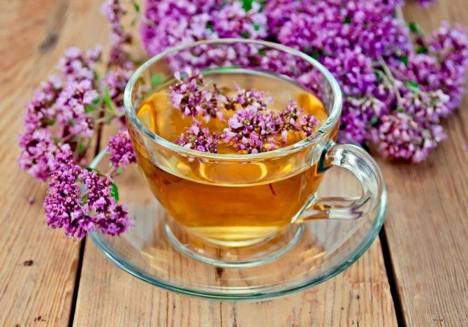 заваривание чая из липы
