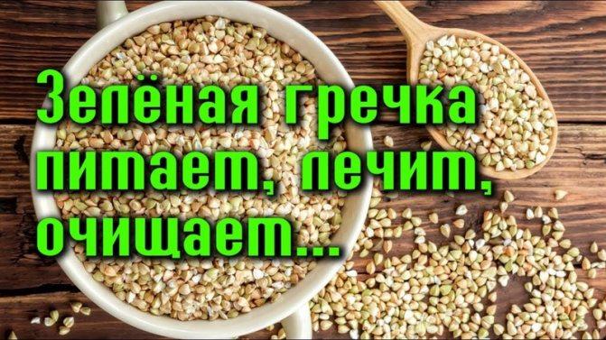 Зеленая гречка: польза и вред, что такое, калорийность, бжу