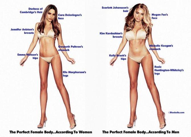 Женщины идеальной красоты: слева - составлен женщинами, справа - мужчинами.